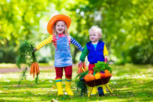 bigstock-Kids-Picking-Vegetables-On-Org-98244176